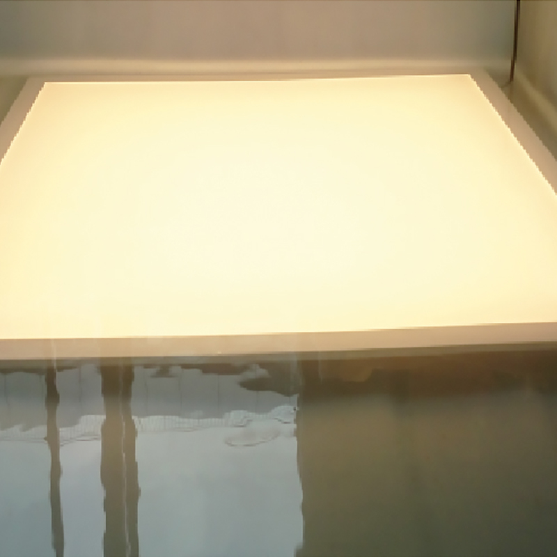 Hot ip65 led panel frontside Dolight LED Panel Brand
